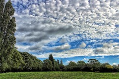 A talkative sky, over the hill!😊 (LeanneHall3 :-)) Tags: green grass field hill trees branches leaves blue sky skyscape white clouds talkativeclouds cloudsstormssunsetssunrises eastpark hull kingstonuponhull landscape canon 1300d groupenuagesetciel