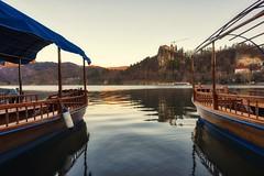 0835 A New Day Has Come IV (Hrvoje Simich - gaZZda) Tags: landscape outdoors noperson sky blue water lake pond reflections wood morning bled slovenia europe travel nikon nikond750 sigma2414art gazzda hrvojesimich