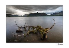 5D4_3662-HDR (Paul Compton PDphotography) Tags: lpoy lakes pdphotography water cumbria derwentwater lakedistrict landscape photography