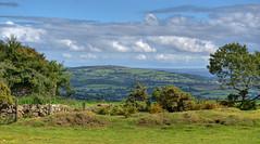 Cornish landscape near Callington (Baz Richardson) Tags: cornwall kithill bodminmoor minions countryside