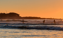 Surfagette City (JustAddVignette) Tags: australia beach cloudless dawn female freshwater headland landscapes newsouthwales northernbeaches ocean rocks seascape seawater sky sunrise surfers sydney water