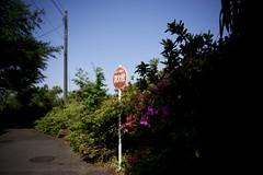 DSC_5125 (satooooone) Tags: nikon d750 snap landscape 風景