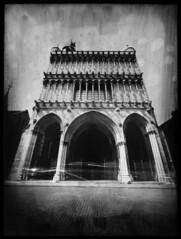 Notre Dame (vincent-photo) Tags: analog blackwhite brush caffenol dijon diy fomarc foma homemade homemadecamera largeformat negativepaper pinhole sténopé 18x24