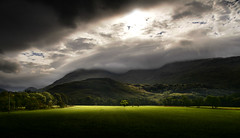 Standing out (PentlandPirate of the North) Tags: landscape tree highlands scotland invercreran field mountains light