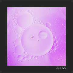 Oil and Water Abstract #2 (Simon Caplan) Tags: oil water glassdish macro torchlight abstract detail square magenta purple stilllife
