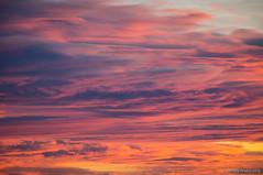 Ni frío ni calor (SantiMB.Photos) Tags: 2blog 2tumblr 2ig atardecer sunset cielo sky nubes avià berguedà geo:lat=4207739762 geo:lon=182148278 geotagged avia cataluna españa esp