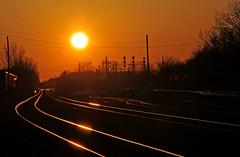 Shiny Rails (craigsanders429) Tags: bereaohio sunsetphotography sunsets sunset sunsetcolors railroadtracks reflectionphotographs reflectionphotography