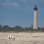 Cape May, New Jersey thumbnail