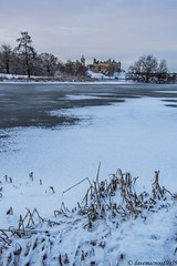 IMG_6267 (davemacnoodles59a) Tags: january2016 wintertime raw tripod sky clouds white trees green winter ice frozen cold historicpalace historiclinlithgowpalace scotlandhistoricroyalpalace historicchurch historicstmichaelparishchurch scotlandhistoricchurch linlithgowhistoricchurch linlithgowloch westlothianloch scottishloch historicscotland birthplaceofmaryqueenofscots scenicview landscape waterscape icescape snow touristattraction visitiorattraction historiclinlithgowpalaceattraction scotlandhistoricroyalpalaceattraction historicstmichaelparishchurchattraction scotlandhistoricchurchattraction linlithgowhistoricchurchattraction linlithgowlochattraction westlothianlochattraction scottishlochattraction linlithgowattraction westlothianattraction scotlandattraction weewalks januarywalks winterwalks lochwalks linlithgowlochwalks westlothianlochwalks scottishlochwalks linlithgowwalks westlothianwalks scotlandwalks canandslr canoneos70d adobephotoshopcs6 linlithgow westlothian centralscotland forthvalley scotland tintinpalacejan2016