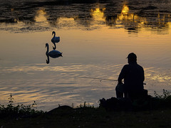Evening Fishing at Roath Park Lake, Cardiff (All I want for Christmas is a Leica) Tags: olympus olympusep2 olympus45150mm cardiff roathpark roathparklake roathparkcardiff silhouette angling fishing water sunset
