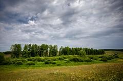 Before the rain (Valery Goloha) Tags: travel пейзаж путешествие украина ukraine landscape sky nature natgeoua natgeo summer tree