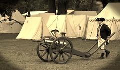 Revolutionary War Days, Cantigny Park. 31 (EOS) (Mega-Magpie) Tags: canon eos 60d outdoors cantigny park wheaton dupage il illinois usa america sepia revolutionary war days people person guy man dude fella cannon artillery