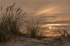 Enjoying the sunset (ARTUS8) Tags: dünenlandschaft nikon24120mmf40 flickr strand nikond800 wolken sonnenaufuntergang sonnenuntergang himmel sky norderney
