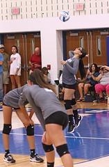 IMG_1866 (SJH Foto) Tags: girls high school volleyball teens team east stroudsburg varsity serve burst mode