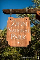 "Thursday's JBP Photo of the Day! ""Entrance Sign of Zion National Park - Portrait"" (Joe Boyle Photography) Tags: jbpphotooftheday jbp interiordesign interiordesigner commercialdesign commercialart zion national park west rim trail utah hiking backpacking rock rocks formations valley valleys canyon canyons mountains mountain mt mount majestic trees tree breathtaking sunrise colorful magnificent beautiful surreal beauty nature wilderness commercialinteriors commercialphotographer commercialphotography"