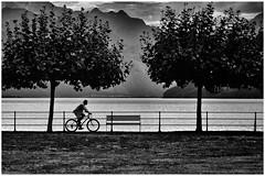Der Biker. 🚴♂️ (Beutler Daniel) Tags: bike fahrrad velo monochrom blackwhite bw schwarzweiss sw streetphotography streetfotografie switzerland svizzera suisse schweiz