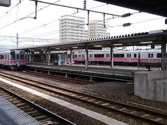 Pink, pink, and pink (しまむー) Tags: panasonic lumix dmcgx1 gx1 g 20mm f17 asph trip train yuri highland railway 由利高原鉄道