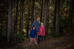 IMG_6482 (Jose Merino Fotografía) Tags: familia naturaleza chile ninhue madera bosque árbol