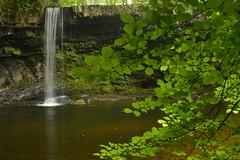 Sgwd Gwladus, Brecon Beacons National Park, Wales (CoasterMadMatt) Tags: llwybrelidir2018 llwybrelidir llwybr elidir elidirtrail2018 elidirtrail trail sgwdgwladus2018 sgwdgwladus sgwd gwladus ladyfalls2018 ladyfalls lady falls brorsgydau bror sgydau waterfallcountry waterfall country fall waterfalls cascade cascades river rivers stream streams naturallandscapes natural landscape landscapes parccenedlaetholbannaubrycheiniog parccenedlaethol bannaubrycheiniog parc cenedlaethol bannau brycheiniog breconbeaconsnationalpark breconbeacons nationalpark brecon beacons national park powys decymru de cymru southwales south wales britain greatbritain gb unitedkingdom uk june2018 spring2018 june spring 2018 coastermadmattphotography coastermadmatt photos photography photographs nikond3200