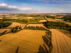 The road is long. (Darren Flinders) Tags: rotherham england unitedkingdom gb dji djiphantom4 wentworth wentworthpark rotherhamdistrict southyorkshire yorkshire yorkshirecountryside sunset