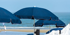 bleu en bleu (rey perezoso) Tags: 2018 blue bleu azul blau umbrella parasol sombrilla sonnenschirm dehaan belgië westvlaanderen belgique eu coqsurmer mar ocean day meer nordsee beach playa plage belgium strand cmwdblue