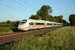 Velaro D (Tz 713 + Tz 710), BR 407 as ICE 516, Bornheim, 1st September 2018 (cfl1969) Tags: bornheim dbfernverkehr velarod br407 siemens