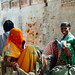 Veiled Women in Horse Cart, Mathura India