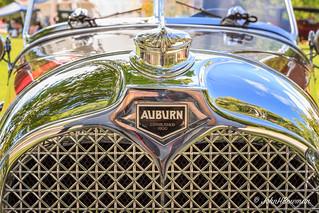 Auburn Radiator Badge