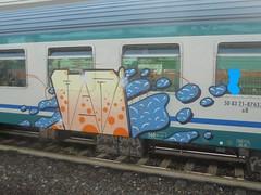 295 (en-ri) Tags: vevi arancione nero indaco train torino graffiti writing