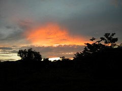 sunset Chiperone