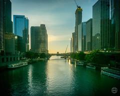 Early morning on the Chicago River (brianloganphoto) Tags: trees building sky sunrise skyline river chicago landmark landcape illinois lake boats water reflections williampfaheybridge unitedstates us