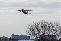 A SMALL AIRPORT, SOME PARKS AND CLOUDS - CLXXIII (Jussi Salmiakkinen (JUNJI SUDA)) Tags: chofu tokyo japan cityscape park airport sky aircraft wood airplane landscape tama 調布 飛行場 空港 林 森 空 武蔵野 多摩 東京 日本 風景 clouds spring 2018 maaliskuu turboprop dornier do228 takeoff