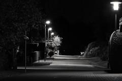 4 nightlights /// 4 Nachtlichter (Pixelchen1) Tags: nikon5500 nikon70300mm14563 street strase lichter light electriclight laterne night nacht way weg blackandwhite schwarzweis edited longexposure langzeitbelichtung silent stille