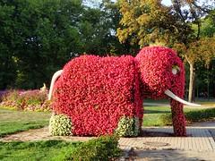 "a ""red flowering"" elephant (libra1054) Tags: elephant elefante elefant éléphant red rojo rosso rot rouge vermelho vermell skulpturen sculptures esculturas escultures sculture hamm nrw germany"