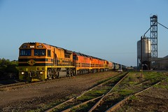 MKA in the middle (Aussie foamer) Tags: gwa009 gwaclass edi edidowner emd gwa geneseewyomingaustralia graintrain tailembend southaustralia train railway locomotive rpausagwaclass rpausagwaclassgwa009