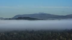 Dawn Haar over Inverness (prajpix) Tags: benwyvis munro mountain hill hills inverness highlands scotland haar mist trees city woods forest dawn morning sunrise sunup