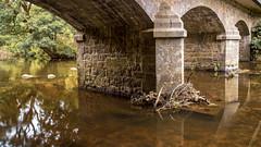 Pont sur le Leguer (Thos A.) Tags: bridge pont rivière river water eau longexposure nature natur naturephotography bretagne breizh bzh canon eos80d eos