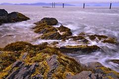 Bowen islands (kelvinsei) Tags: longexposure sea rock seaweed bowenisland