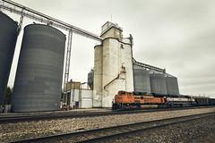 Elevators (Clay Fraser) Tags: brush colorado grainelevator railroad burlington fujifilm xpro2 xf1024mm pinconnected