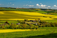 Chalk Valley (cantdoworse) Tags: stoke farthing countryside broadchalke wiltshire england salisbury canon 6d landscape river ebble rapeseed