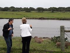 13/09/18 - Visita a Santa Vitória do Palmar: reserva ecológica do Taim. Com o deputado Adilson Troca.