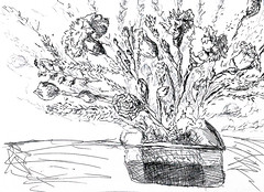 flowersdrawing flowersdrawings flowersart flowersartist flowersartists flowerspainter flowerspainters raphael perez (raphaelperez806) Tags: flowersdrawing flowersdrawings flowersart flowersartist flowersartists flowerspainter flowerspainters raphael perez raphaelperez flowerdrawing flowerdrawings flowerart flowerartist flowerartists flowerpainter flowerpainters flowerpainting flowerpaintings flowerspaintings flowerspainting flowersartworks flowersartwork flowerartwork flowerartworks howtodrawflower drawflower drawflowers howdrawflower howdrawflowers drawingflower drawingsflowers drawing draw howtopaintaflower howtopaintaflowers paintaflower paintaflowers paintflower paintflowers paintingsofflower paintingofflower paintingflower paintingsflowers israeliartist israelidraw israelidrawer רישוםשלפרח רישוםפרחים רישומיפרחים רישומיפרח רפיפרץ רישום של פרח flower flowers drawings paintings art artists artist painter painters artwork artworks רפי פרץ