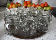 252/365 Today Is.... (Helen Orozco) Tags: 252365 2018365 tomatoes tomatochutney jars kitchen withmatt