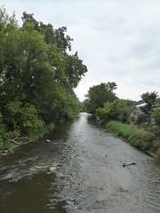 Beloit, WI, Beloit College, Turtle Creek (Mary Warren 11.3+ Million Views) Tags: beloitwi beloitcollege water creek river turtlecreek nature flora trees plants green leaves foliage landscape