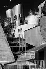 win02 (Marco Pacini) Tags: marcopaciniphoto nikon nikonitalia nikoncameras nikonphotography nikkorlens nikkor architecture architettura archilovers archistar