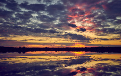 endless sky (Andreas Höschel) Tags: sonne sun sunlight sonnenlicht sonnenuntergang himmel sky wolken clouds wasser water waterscape landscape cloudscape spiegelung genthin jerichowerland sachsenanhalt deutschland germany sony a7 sel1635z abend see