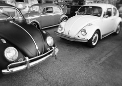 bugs (berangberang) Tags: goldenhalf powershovelgoldenhalf agfavistaprint200 halfframe volkswagen vw vwbug vintagecar