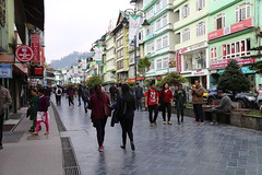 IMG_3952 (Beautiful Creation) Tags: india bagdogra darjeeling pelling yuksom gangtok lachen chopta valley lachung