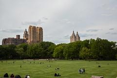 New York (jeanvoyage) Tags: newyork building immeuble architecture gratteciel city ville parc park vert green ciel sky