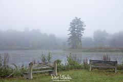 Fog on Ringwood Mill Pond (Dave Blinder) Tags: 483a3001 ringwoodmanorstatepark skylands ringwoodmillpondnj newjerseystateparknew jersey nature photographyfogmistweather2018landscapecanon ef 40mm stm canon 5dsr september